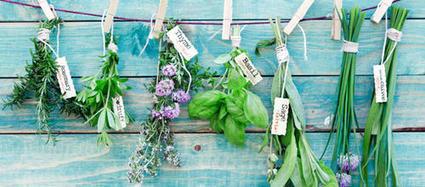 Anxiété - Se soigner avec les plantes