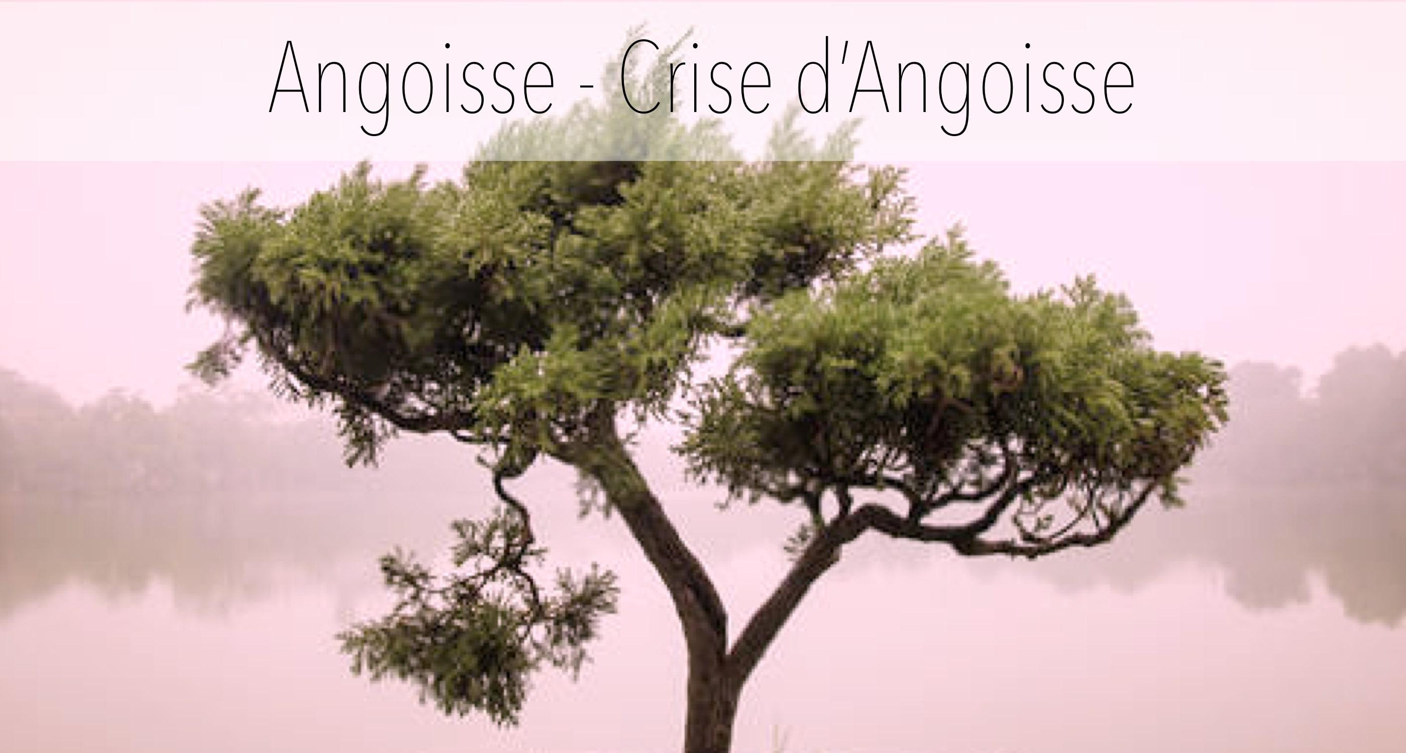 Angoisse - Crise d'Angoisse - Méthodes comportementales